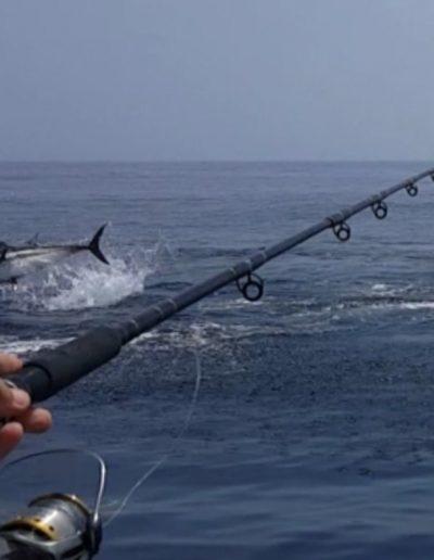 Charter de Pesca en Benalmádena Málaga (26)