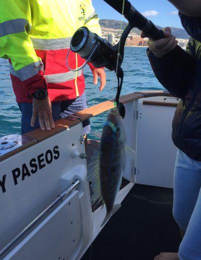 Charter de Pesca en Benalmádena Málaga (36)