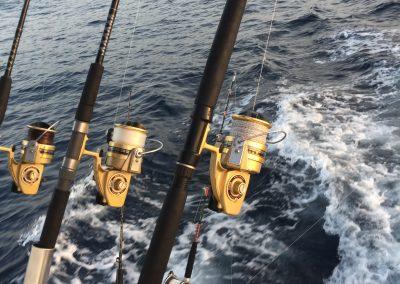 Charter de Pesca en Benalmádena Málaga (43)