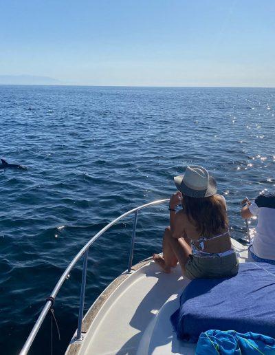 Foto Avistamiento de delfines - dolphin spotting Benalmádena Yo te espero (27)